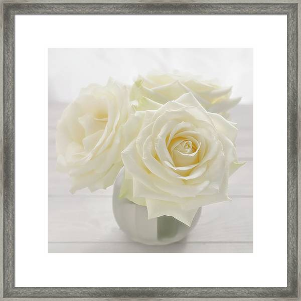Vase With Tree White Roses On A Sunny Framed Print by Cora Niele