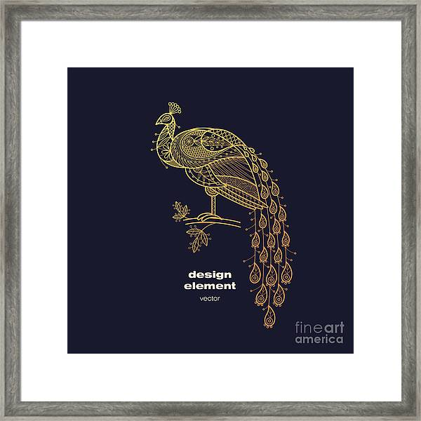 Vector Design Element - Peacock. Icon Framed Print