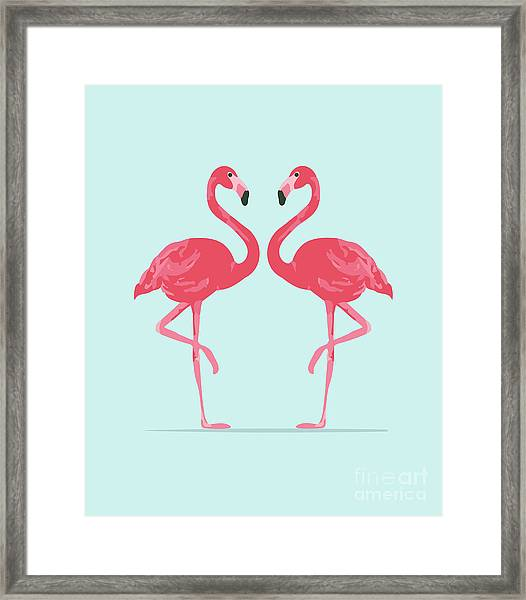 Vector Illustration Pink Flamingo Framed Print