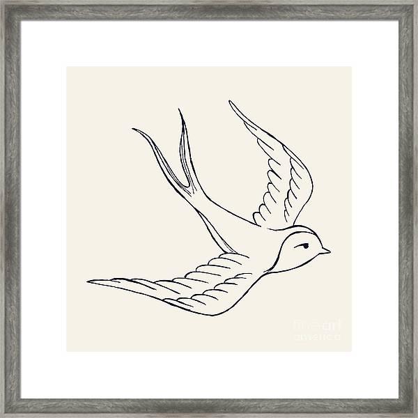 Vector Ink Pen Hand Drawn Flying Framed Print