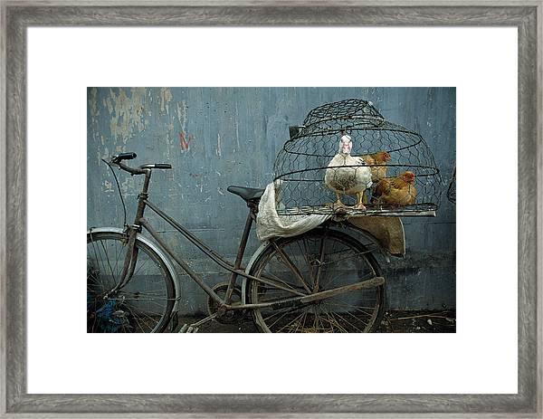 Vietnam, Hanoi, Fowl Market Near Long Framed Print