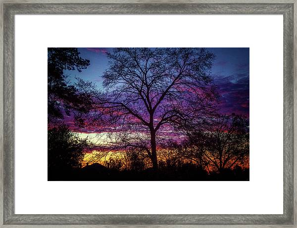 View From The Back Door #2 Framed Print