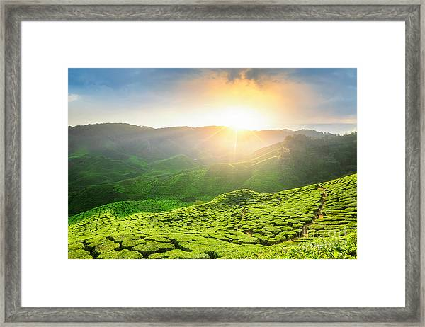 Viewpoint On The Top Of Cameron Framed Print by Anek.soowannaphoom