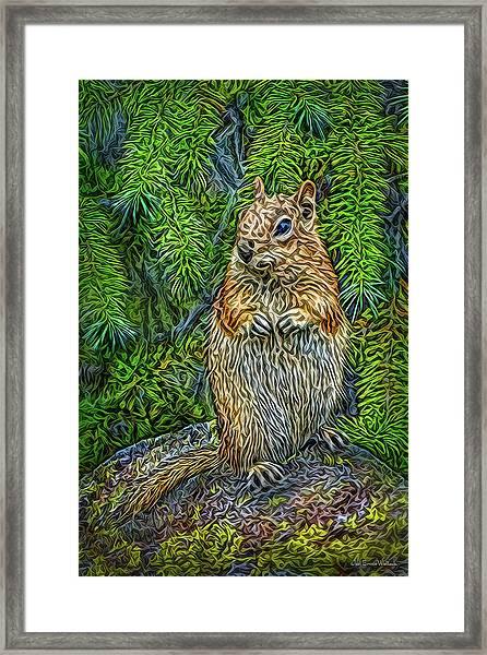 Vigilant Chipmunk Framed Print