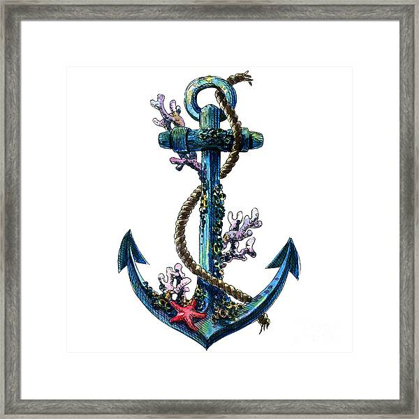 Vintage Sea Anchor With Shell, Coral Framed Print