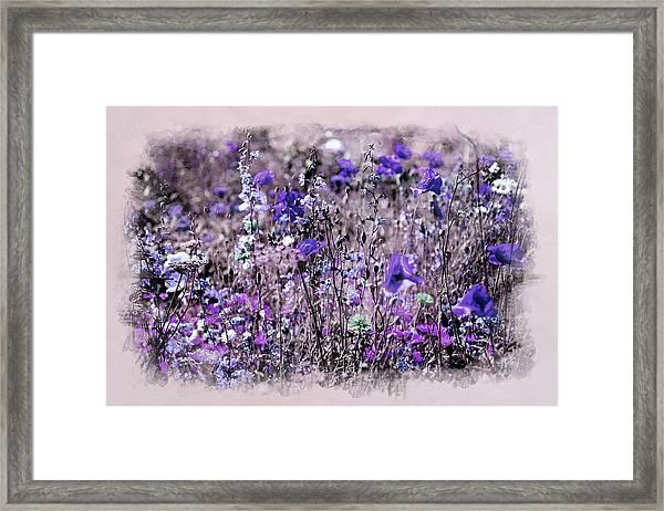 Violet Mood Framed Print