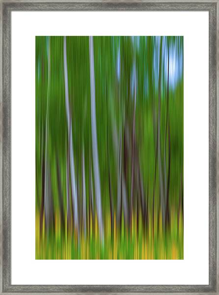 Visions Of Summer Framed Print