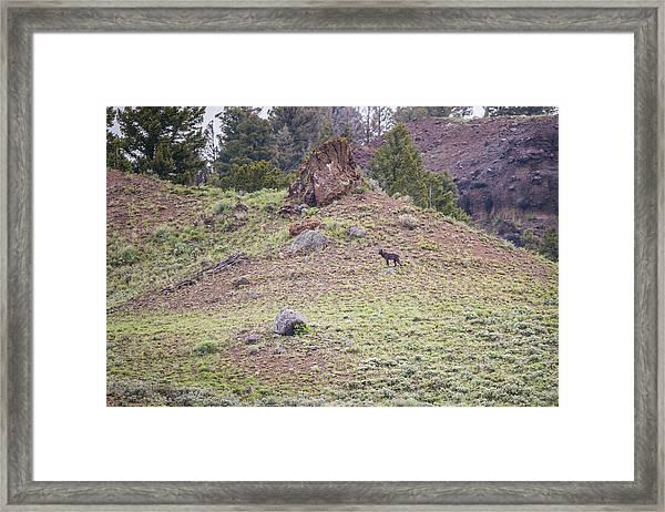 W22 Framed Print