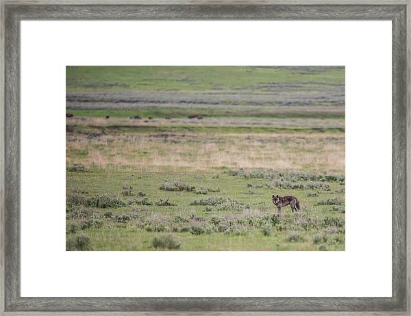 W26 Framed Print