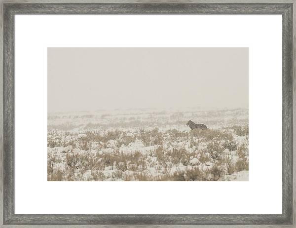 W34 Framed Print