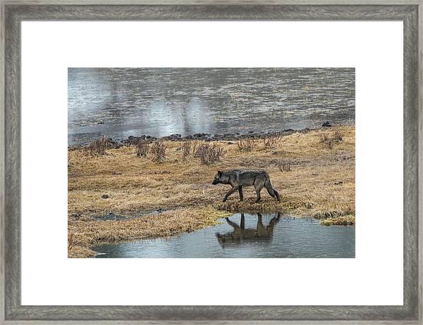 W53 Framed Print