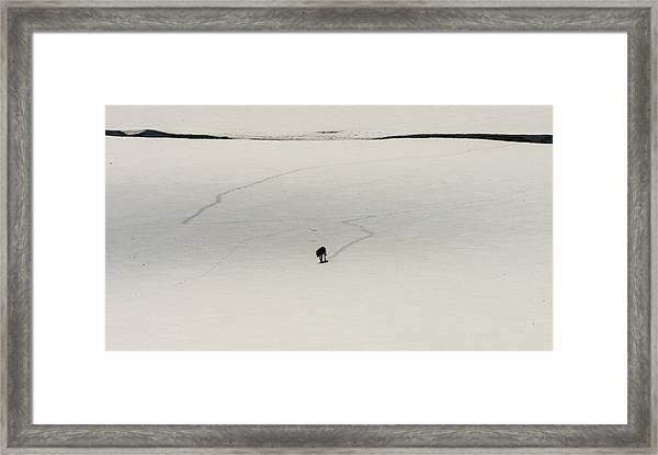 W54 Framed Print