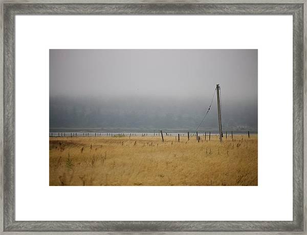 Waitful August Fields Framed Print by Tom Trimbath