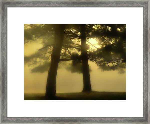 Waking From A Dream Framed Print