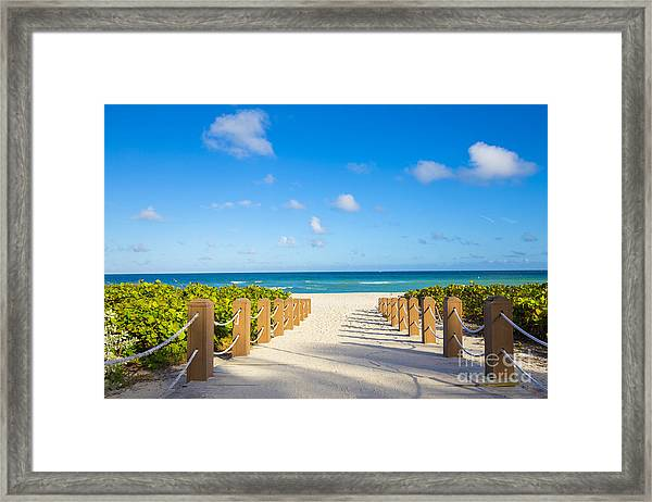 Walkway To Famous South Beach, Miami Framed Print
