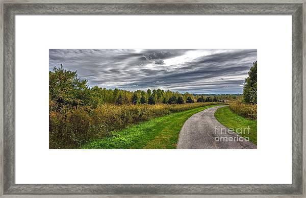 Walnut Woods Pathway - 2 Framed Print
