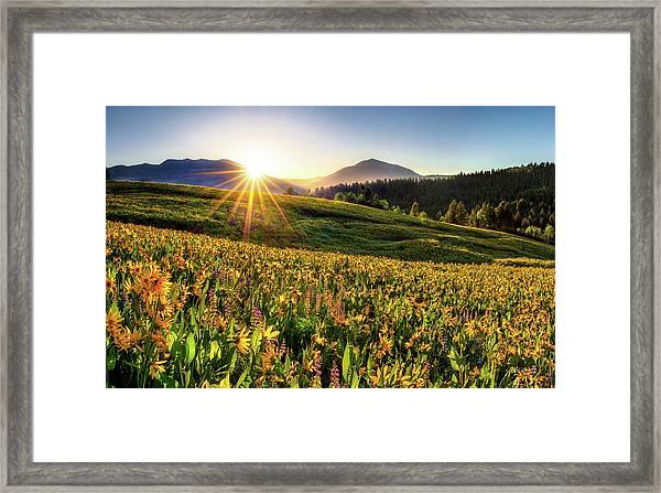 Warm Spring Sunrise 2 Framed Print by Leland D Howard