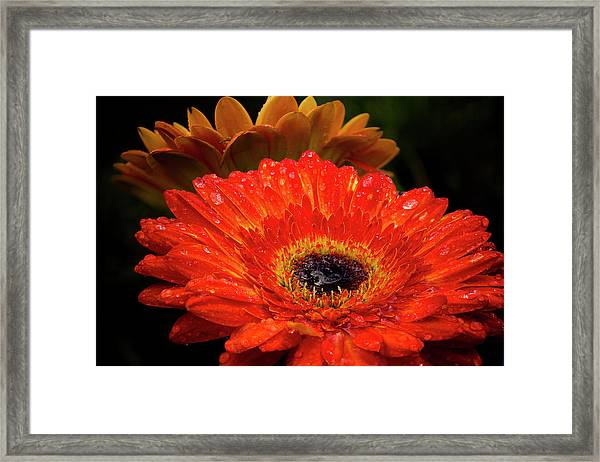 Warm Thoughts Glowing Framed Print
