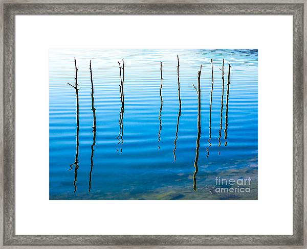 Water Landscape With Trees Framed Print