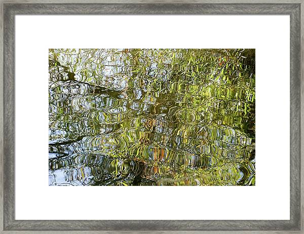 Water Reflection_65_17 Framed Print