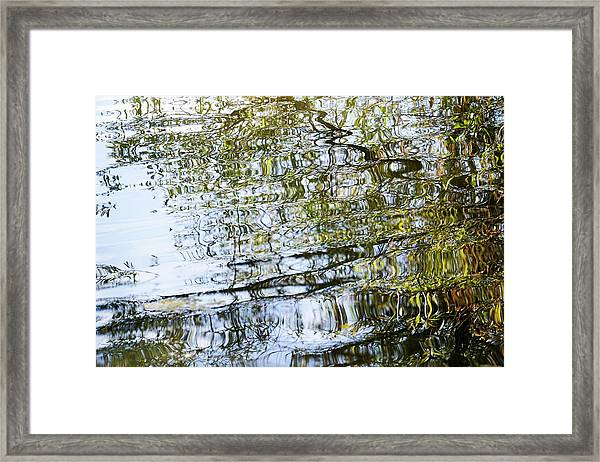 Water Reflection_74_17 Framed Print