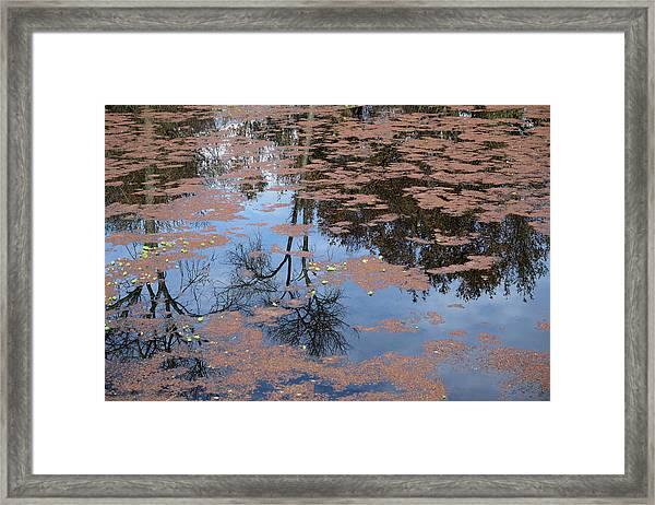 Water Reflection_svrp_1056_18 Framed Print