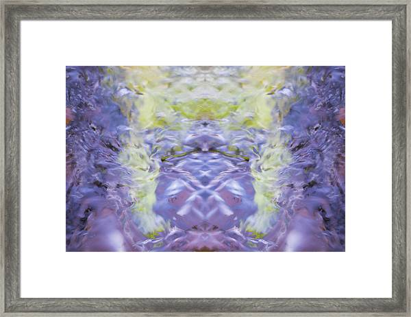 Water Ripples The Grass Framed Print