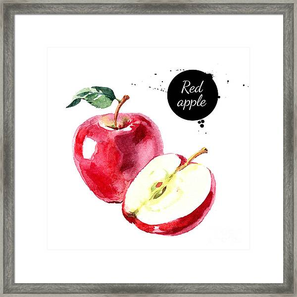 Watercolor Hand Drawn Red Apple Framed Print by Pimlena