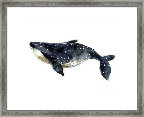 Watercolor Sketch Blue Whale Framed Print