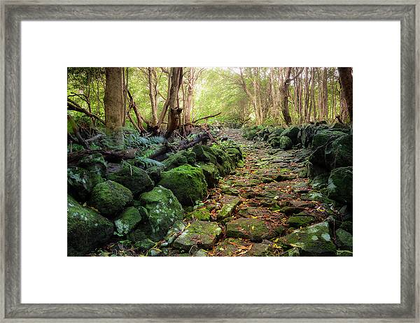 Waterfall Path Framed Print