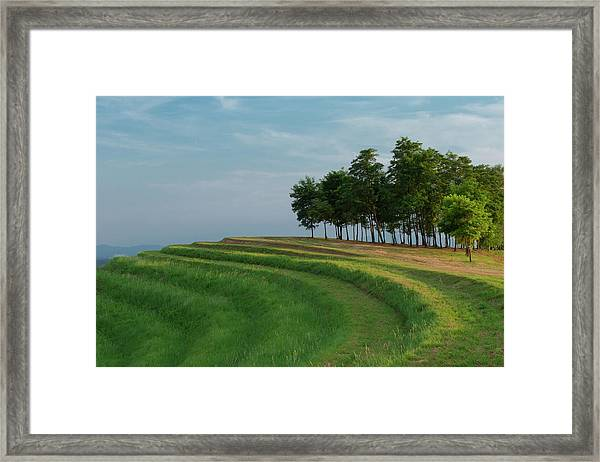 Waves Of Grass Framed Print