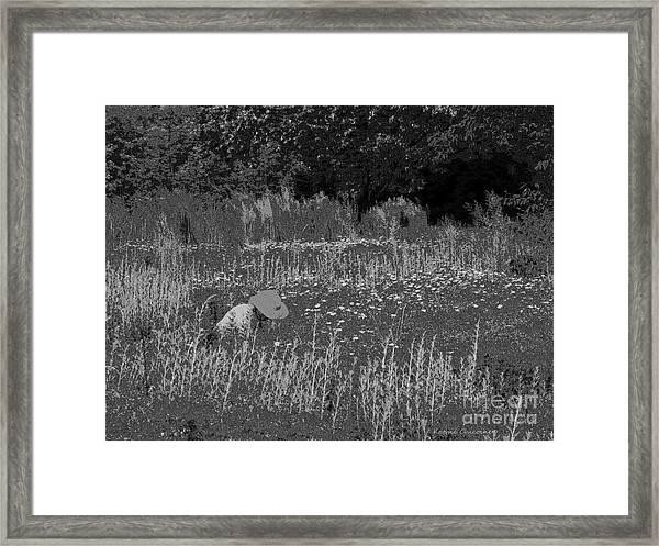 Weeding The Garden Framed Print