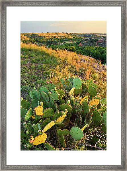 West Texas Canyon Country At Buffalo Framed Print