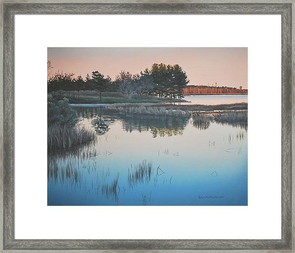 Wetland Reverie Framed Print