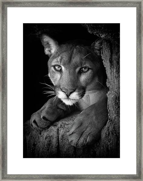 What Now Framed Print