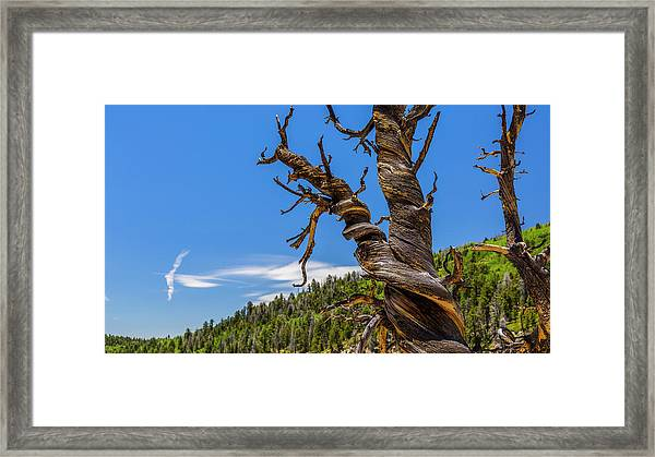 What You'd Expect To See Framed Print