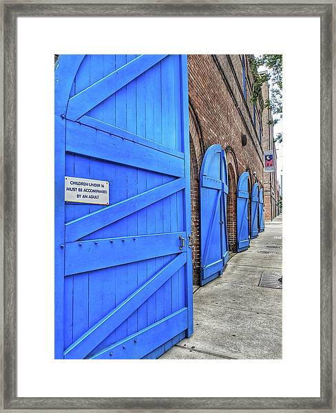 Which Blue Door Framed Print