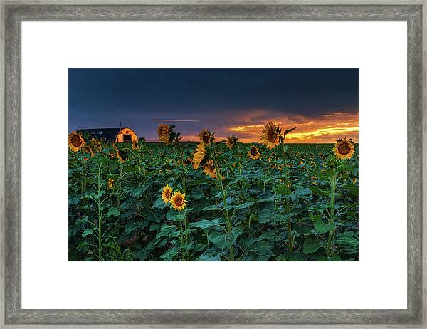 Framed Print featuring the photograph Whispers Of Summer by John De Bord