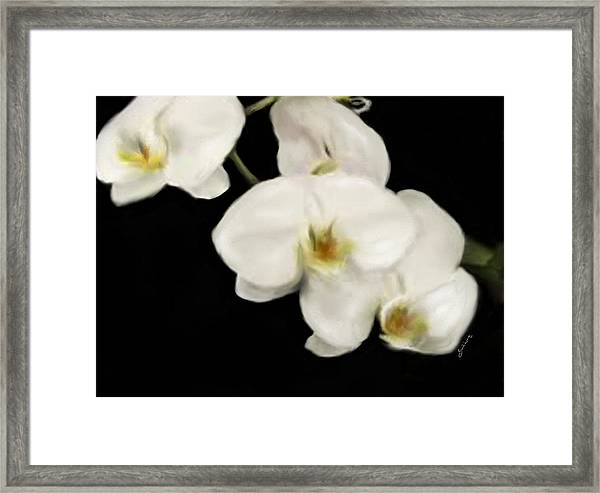 White Innocence Framed Print