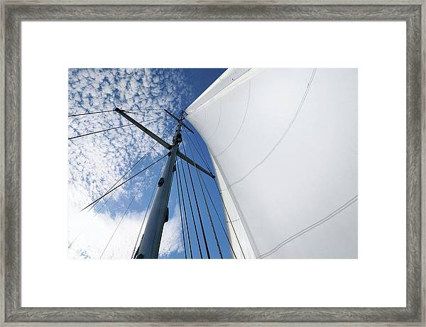 White Sails And Altucumulus Cloud Framed Print
