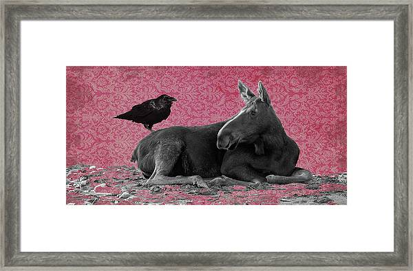 Why Are You Here? Framed Print