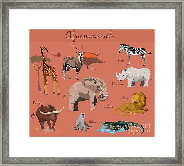 Wild African Animals Set With Nature Framed Print