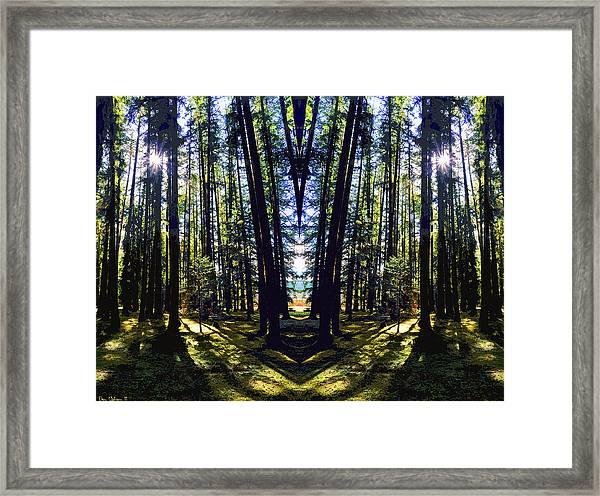 Wild Forest #1 Framed Print
