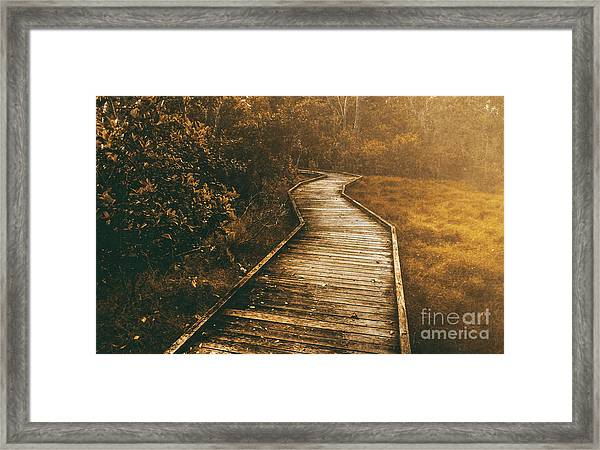Wild Routes Framed Print