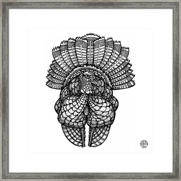 Framed Print featuring the drawing Wild Turkey by Amy E Fraser