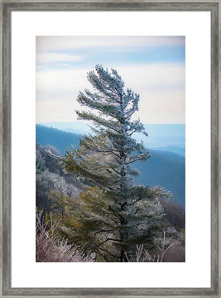 Wind Shaped Framed Print