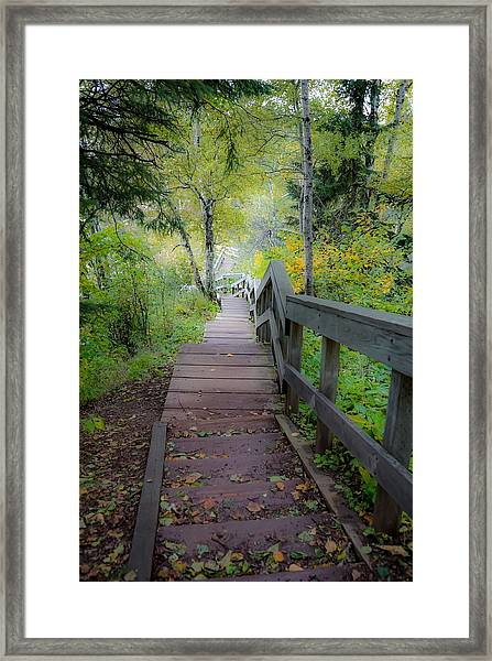 Winding Stairs In Autumn Framed Print
