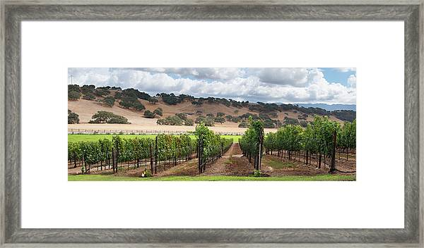 Wine Country Scenic Framed Print