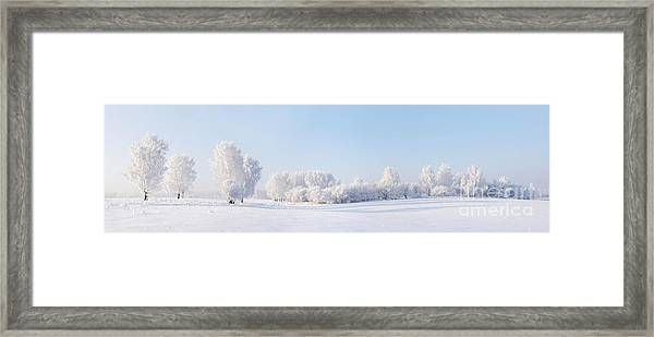 Winter Beautiful Landscape With Trees Framed Print by Alex po
