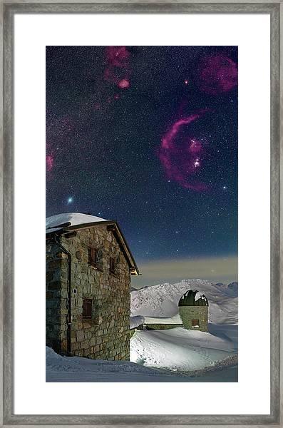 Winter Bounty Framed Print